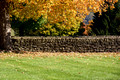 Rock fence & Foliage - Farmers Museum