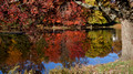 Fall color reflections - Links Pond