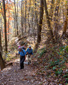 Hiking toward Fishers Gap - Rose River loop